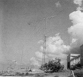Primeras antenas logarítmico-periódicas.