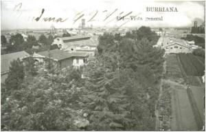 """Vista de Burriana con """"El Templat"""" al fondo."""